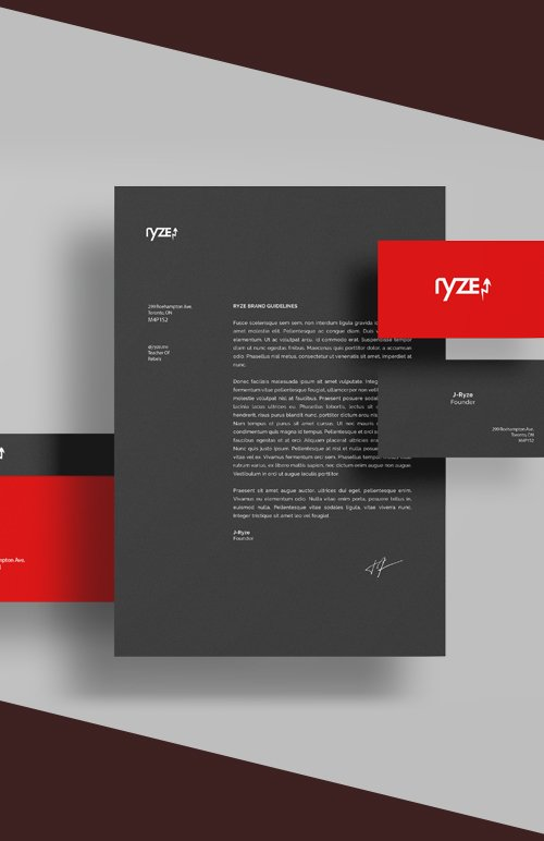 Ryze - Brand_Guidelines_Kit